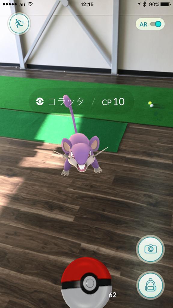 PokemonGO写真3