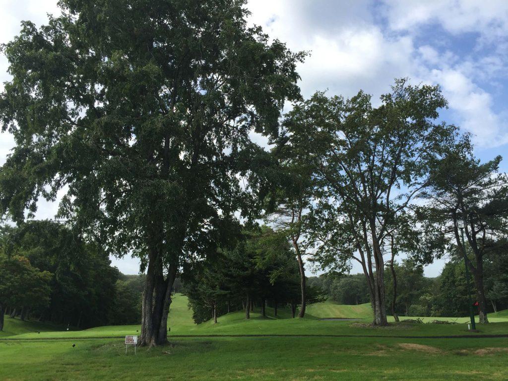 北海道リバーヒルゴルフクラブ写真3